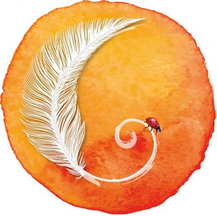 logo-plume-sans-texte-orange.jpg